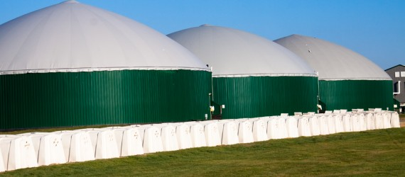 The Anaerobic Digestion